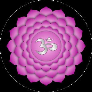 chakra 7